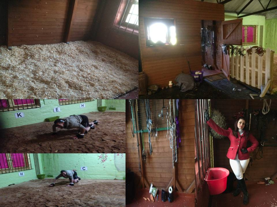 Stable pony play