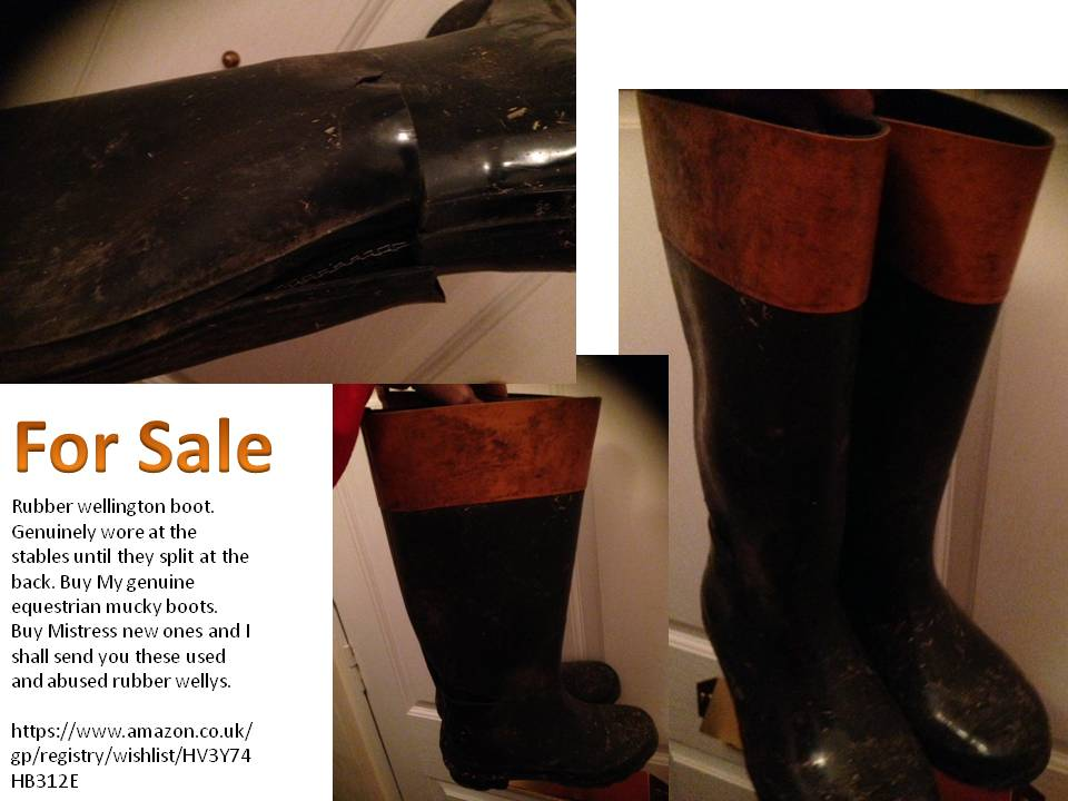 welly for sale